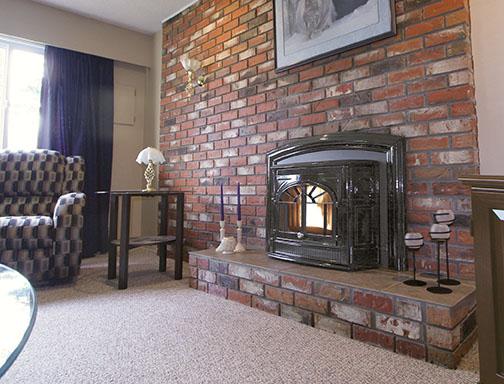 empress fireplace insert by enviro