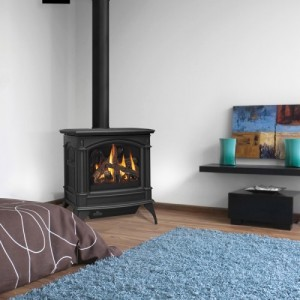 gds60 gas stove napoleon