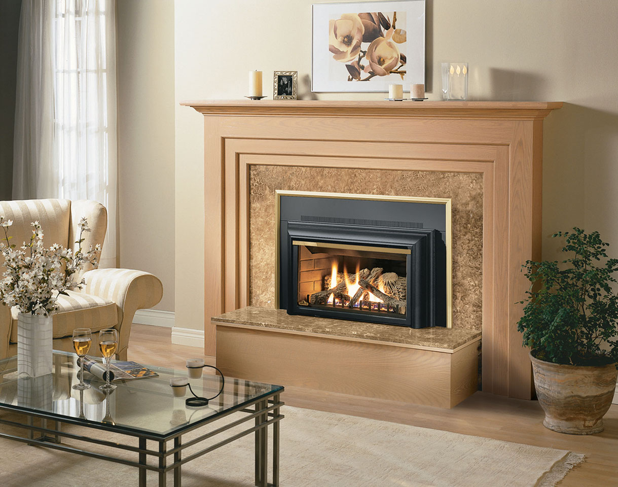 napoleon gdzizc3 fireplace insert
