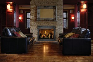 hdx40 fireplace insert by napoleon