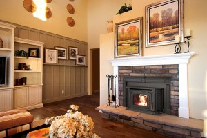 boston 1200 fireplace insert by enviro