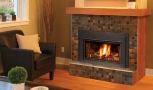 eg31 gas fireplace insert